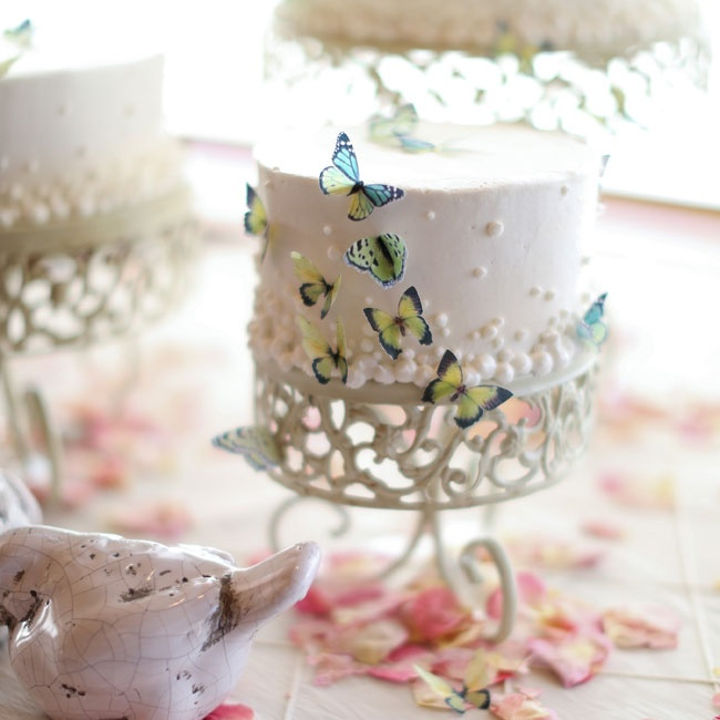 The couple chose a butterfly motif for their cake, and even offered a second, gluten-free cake option for guests.