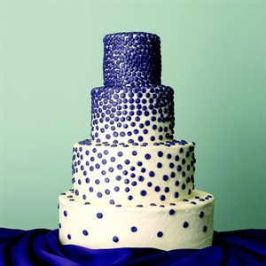 Dark Blue Dot Cake