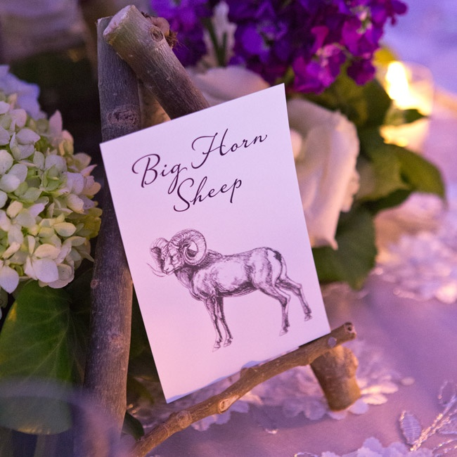 Tables at the reception were named with various animals and illustrated with a sketch.