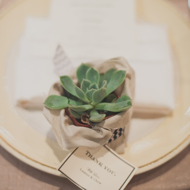 Guests each took home a small, potted succulent plant as favors at the reception.