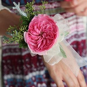 Garden Rose Corsage