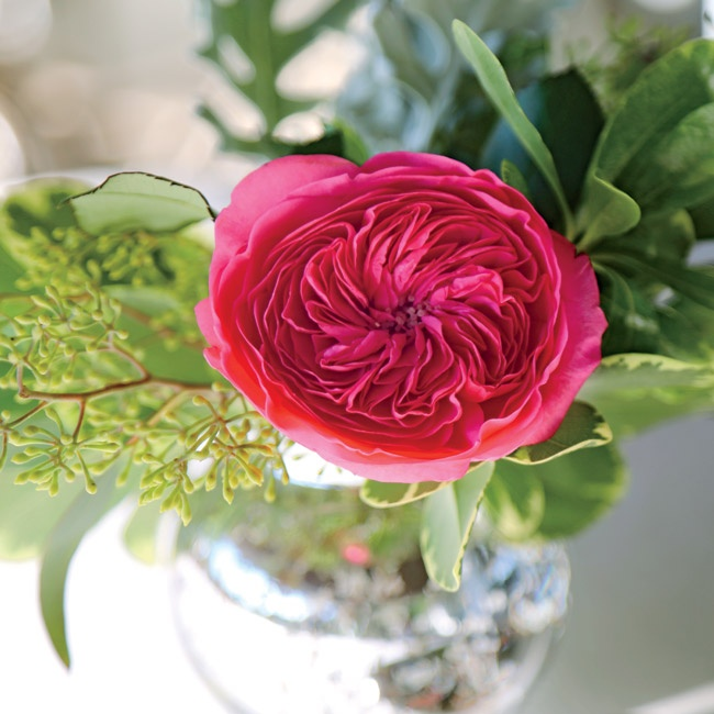 Bright pops of pink garden roses complemented the sage green color palette and whimsy-yet-classy vibe.