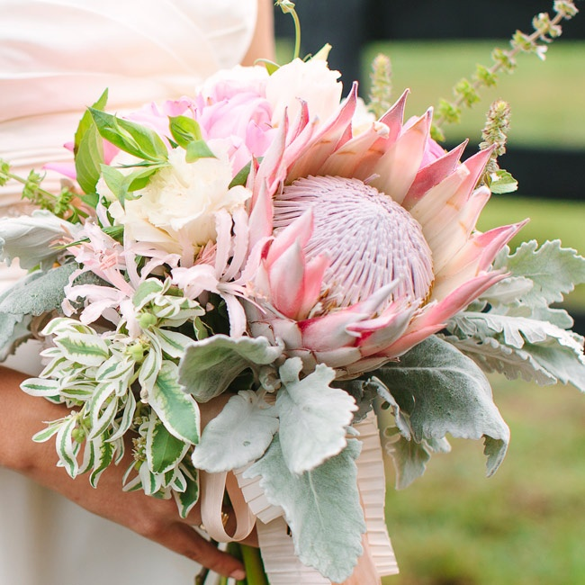 Lindley carried a bouquet of light green and pink with ineteresting textured plants including dusty miller and king protea.