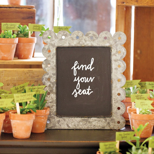 Miniature potted succulents held small green flags with the names of each guest and their seating assignment.
