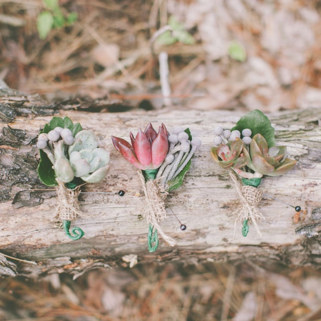 Jared and his groomsmen wore succulent boutonniere aceented with gray berzelia and burlap for a rustic look.