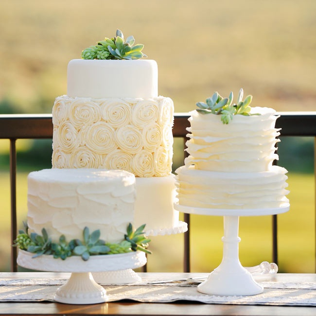 The couple had three cakes - a one tier, two tier and three tier cake - each decorated in a different style and accented with succulents. The three tier cake had a large middle layer covered in ivory rosettes, while the two tier cake had fondant ruffles and the one tier was iced with buttercream frosting.