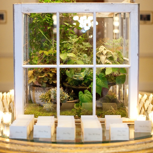 Lush succulents and greenery were encased in a terrarium made from upcycled windows. The unique centerpieces was displayed on the escort card table, lending a shabby chic touch to the reception's elegant decor.