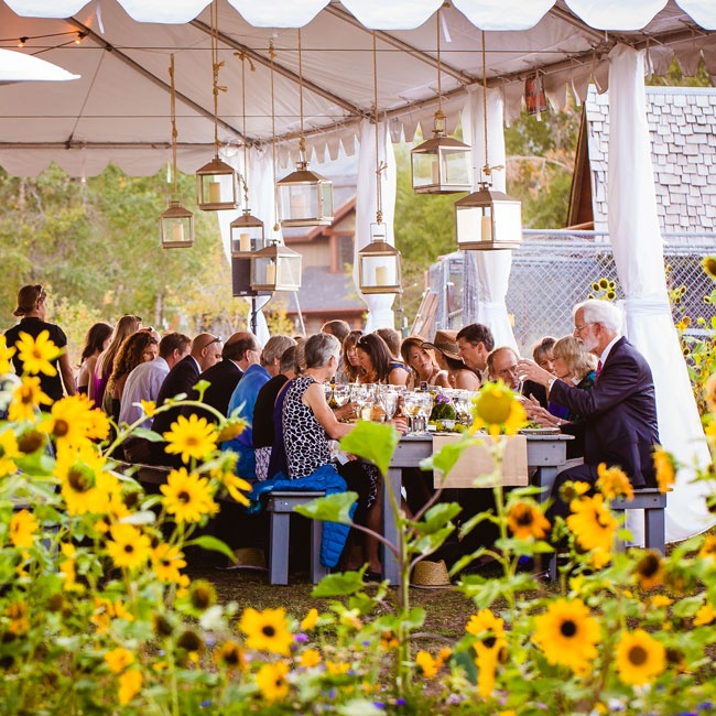 The reception dinner was held in a tented space, surrounded by sunflowers and daisies.