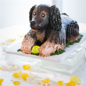 Dog Groom's Cake