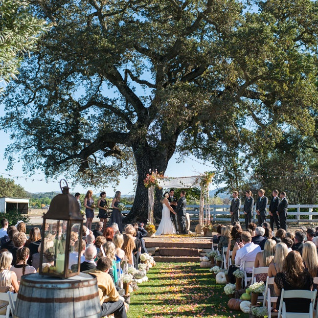 Birch trees and rustic wine barrels mixed with orange floral arrangements at the rustic ceremony.