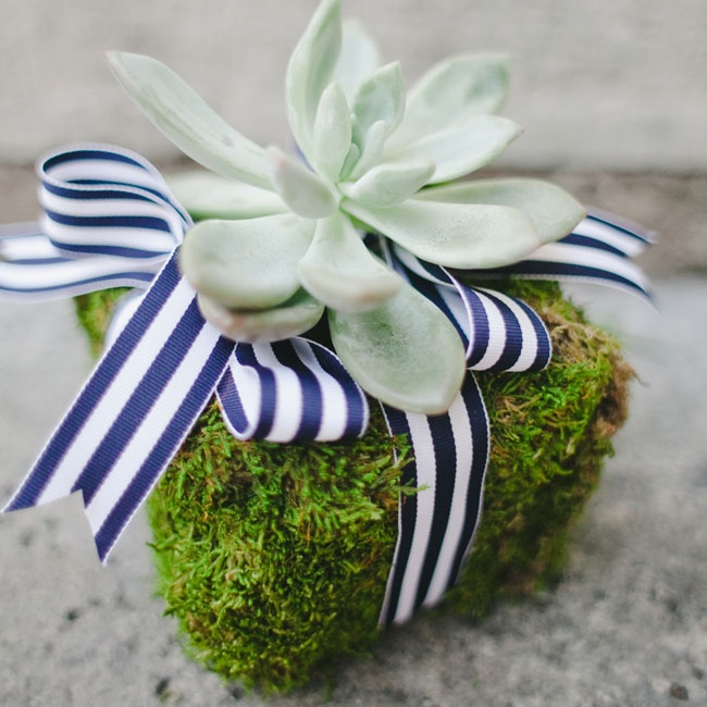 "The ring bearer carried a beautiful, striped ribbon-tied succulent down the aisle--before turning it upside down and dropping it! ""Having little, little kids in your wedding party makes for some unexpected, memorable and hilarious moments,"" says Sarah."