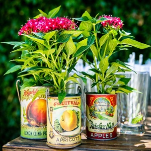 Vintage Can Planters