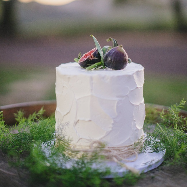 The couple's uneven frosting cake was surrounded by pine needle branches in a rustic, woodland display.