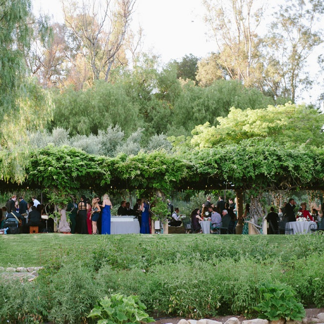Guests headed to the herb garden for cocktail hour, where they sipped on cocktails and listened to the soft music of Spanish guitars under a Wisteria-laden trellis.