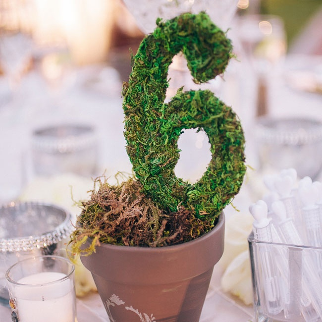 Potted moss numbers marked each of the reception tables.
