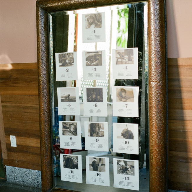 The couple incorporated photos of their dog Desmond into the seating chart, displaying a different photo on each table.