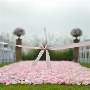 Pink Petal Aisle Runner