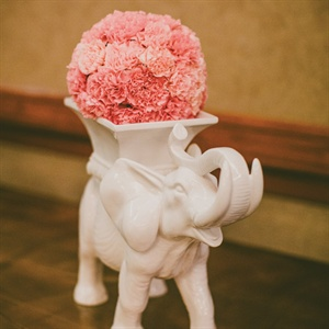 Elephant Flower Display