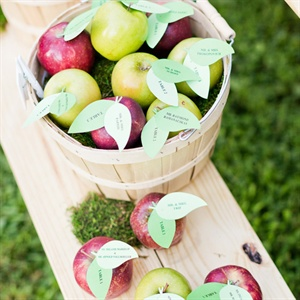 DIY Apple Escort Cards