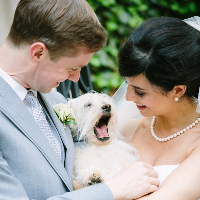 "The bride says that instead of having kids in the wedding, they had their ""exceptionally charming and handsome dog, Stan"" step in as the ring bearer."