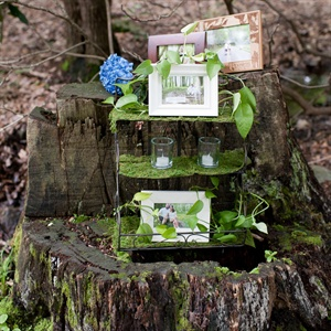 Woodland Photo Decor