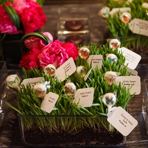 Grass Bed Escort Card Display