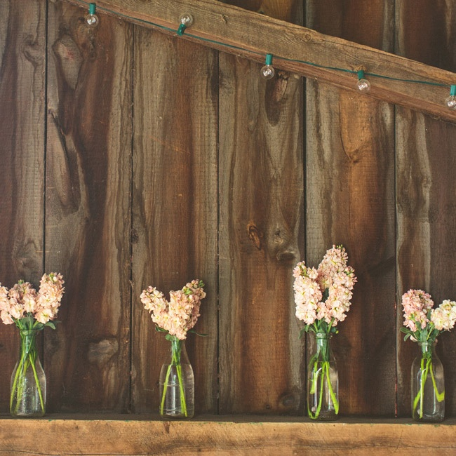 Stems of peach-pink stock flowers were arranged in glass milk bottles and set out throughout the barn.