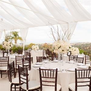 Elegant White Reception