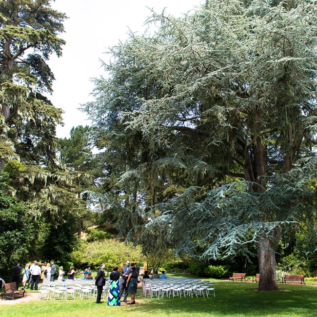 Shakespeare's Garden had the perfect mix of woodland with open space for the outdoor ceremony.
