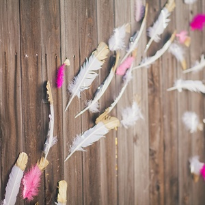Pink and Gold Feather Backdrop