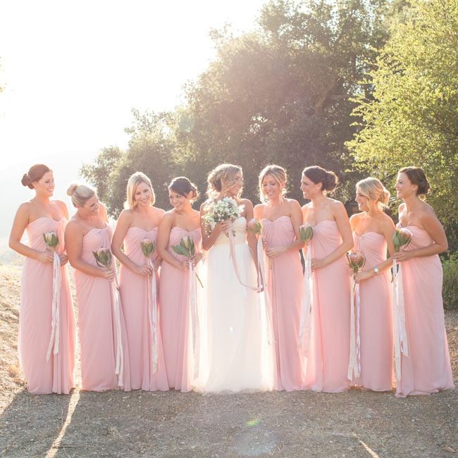 All of Meagan's attendants wore floor-length blush gowns with their hair in updos.