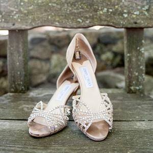 Shimmery Jimmy Choo Heels