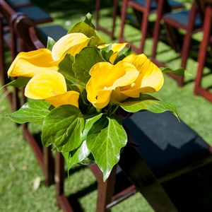 Yellow Calla Lily Aisle Markers