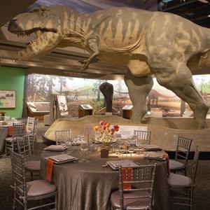 Museum of Science Reception Decor