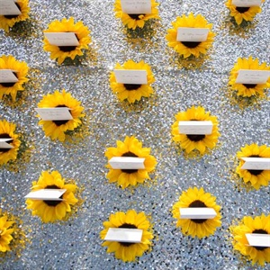 Sunflower Escort Card Display