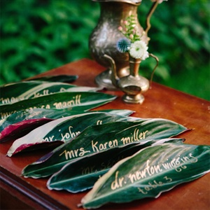 Blush Maranta Escort Cards
