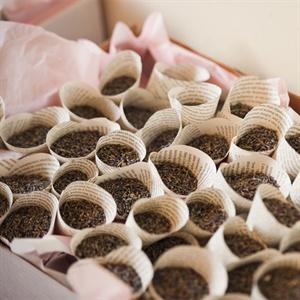 Lavender Filled Paper Cones