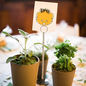 Potted Plant Centerpieces