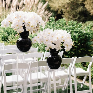 White Orchid Decor