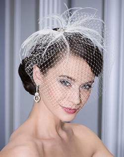 Sophisticated French net face veil accented with feather sprays and large stones at center.