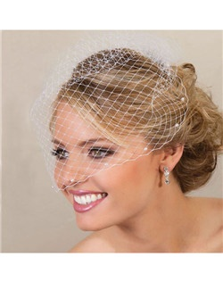 Elegant cage bridal veil with pearls lightly accenting the edge of the veil.