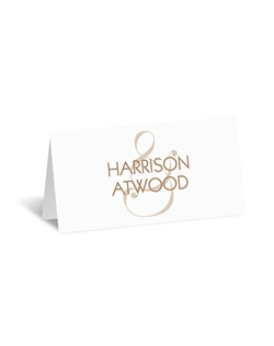 Suddenly an ampersand takes on a whole new meaning! This place card features your wording with an ampersand design in the background. The ampersand and your wording are printed in your choice of colors. Wording is printed in your choice of fonts.