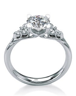 Round brilliant-cut engagement ring named after the Scottish Wildflower Meadowsweet. Two sparkly trios of diamonds on each shoulder accent the center stone beautifully.
