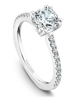 18k white gold classic solitaire with 20 round diamonds and a TCW of 0.25ct