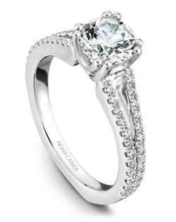 18k white gold classic solitaire with 48 round diamonds and a TCW of 0.29ct